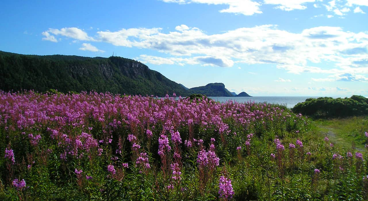 Parc Bic in Rimouski. Highlights of a family road trip to the Gaspé