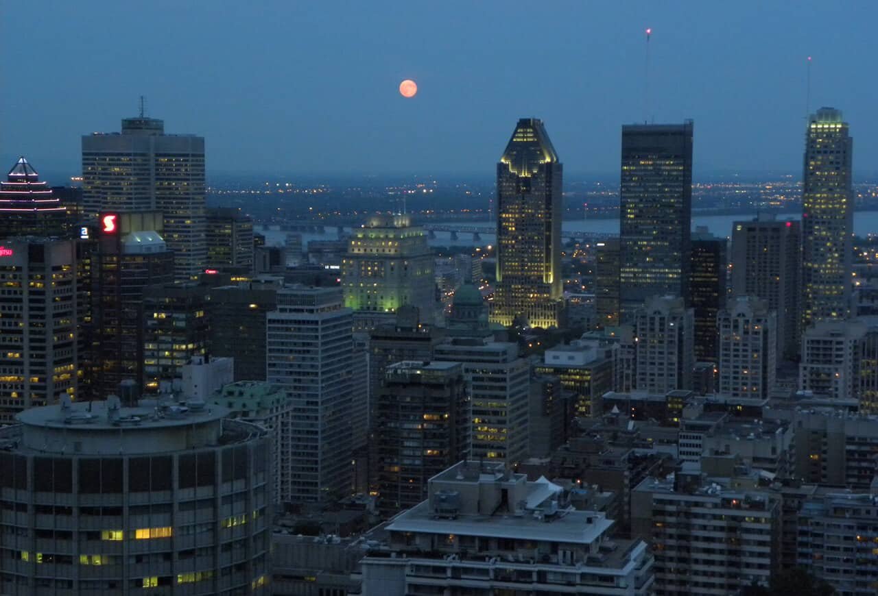 night view of Montreal from Mont-Royal. A Guide on What to See and Do in Montreal