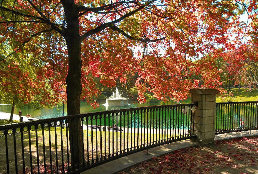 park lafontaine in the fall