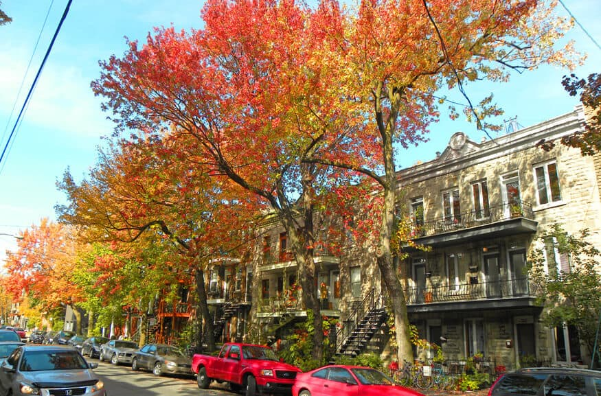 Montreal in the Autumn. Plateau Mont Royal
