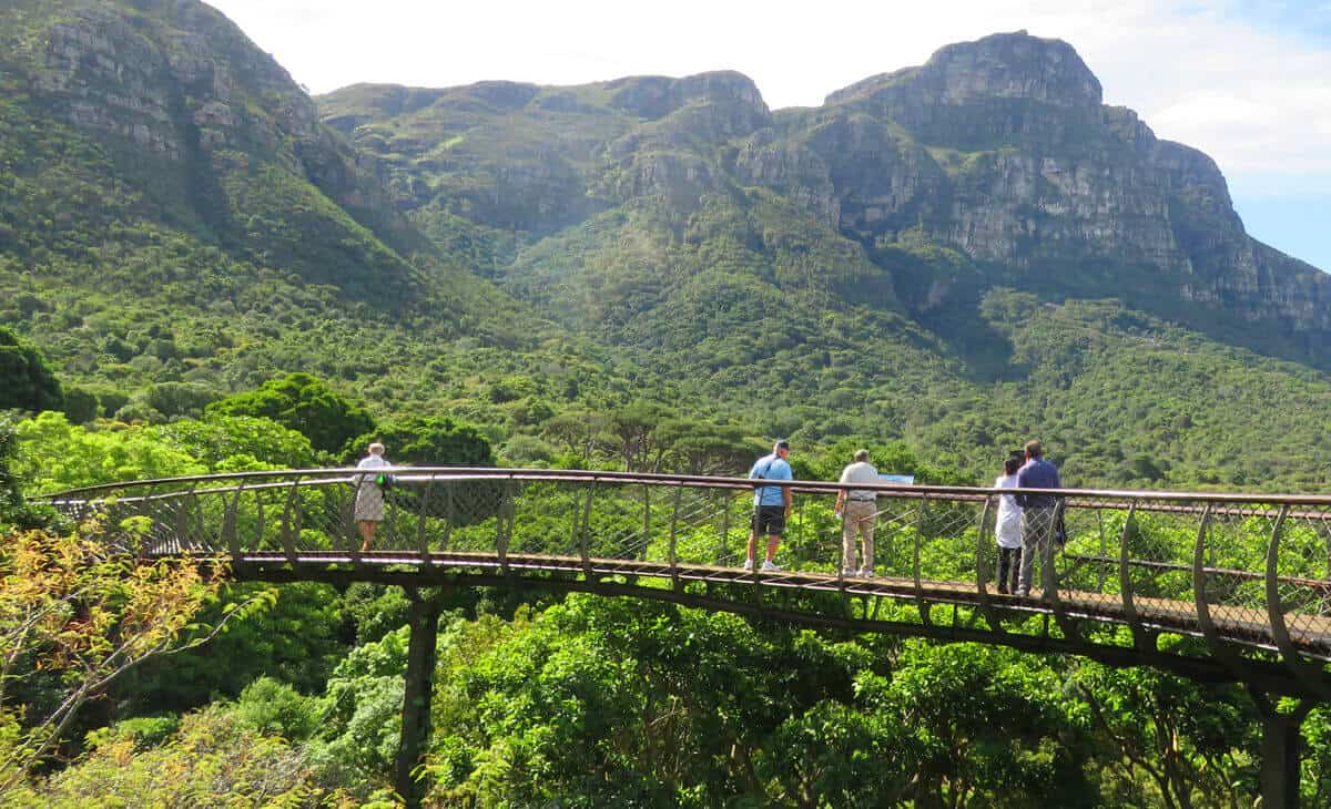 Kirstenbosch Botanical Gardens. 15 Things to Do in and around Cape Town, South Africa