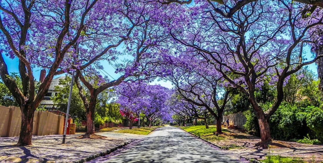 Pretoria, The big guide to South Africa