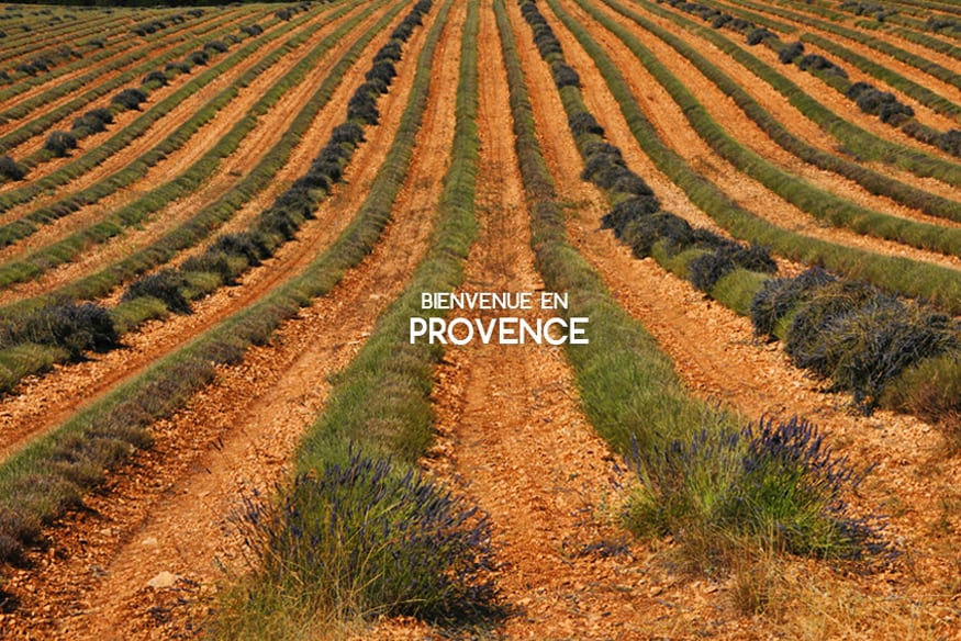GuestPost_Provence_Presentation