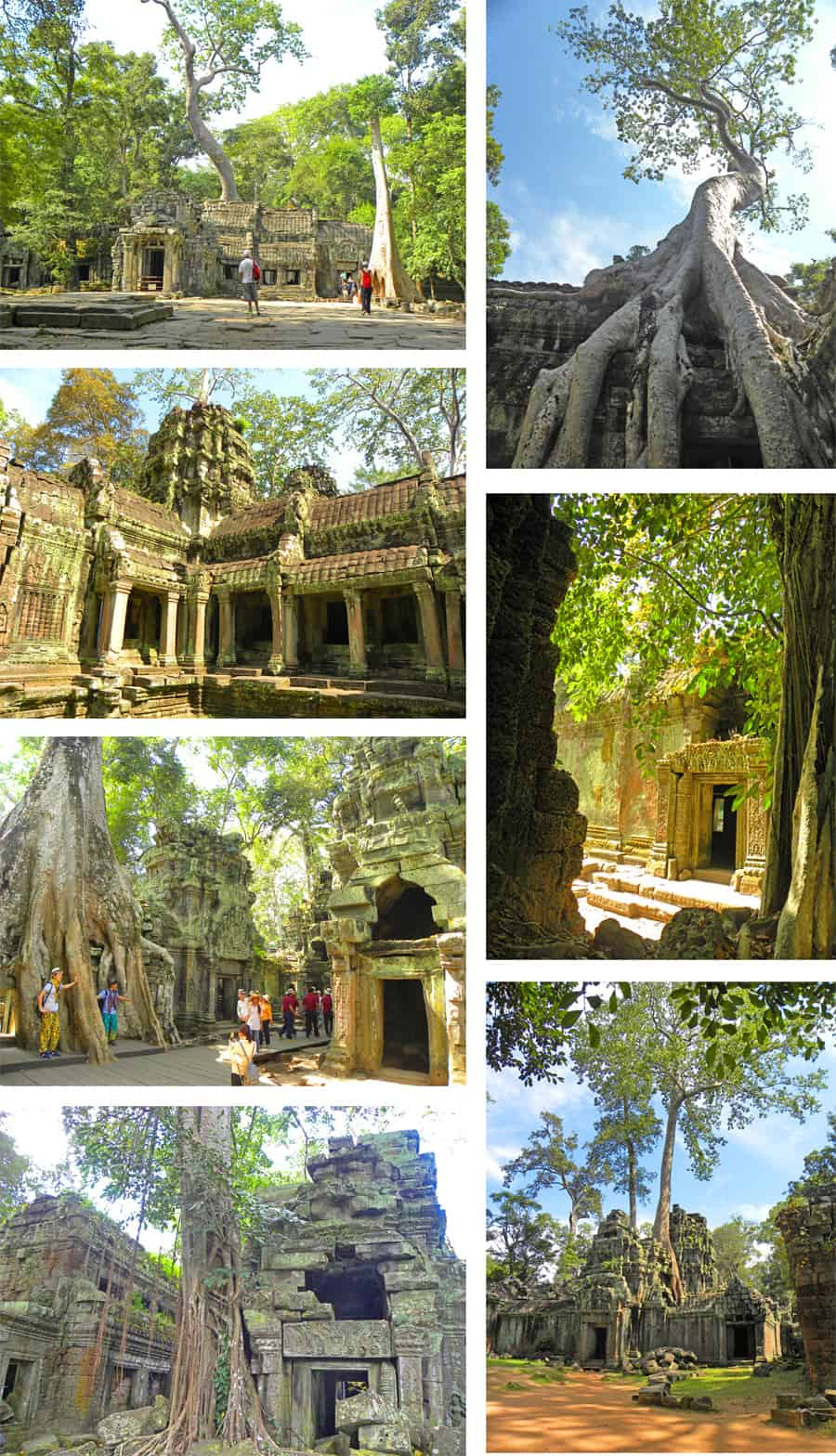 Ta Prohm, the tree temple, Angkor, Cambodia. 10 Temples you have to see in Angkor Archaeological Park