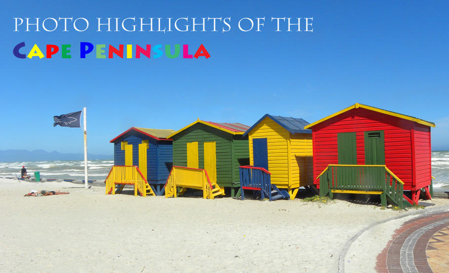 Photo Highlights of the Cape Peninsula