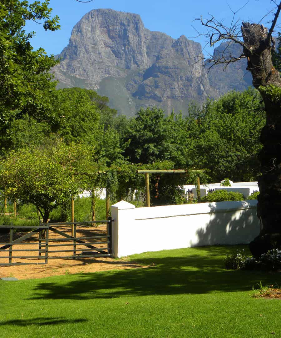 Boschendal Wine Estate. A guide to the best wineries of Stellenbosch and Franschhoek