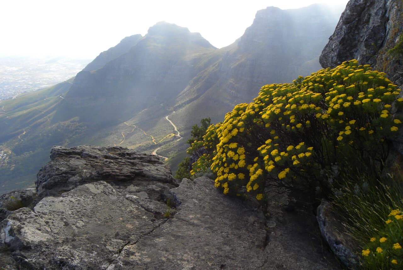 Hiking the India Venster Route up Table Mountain