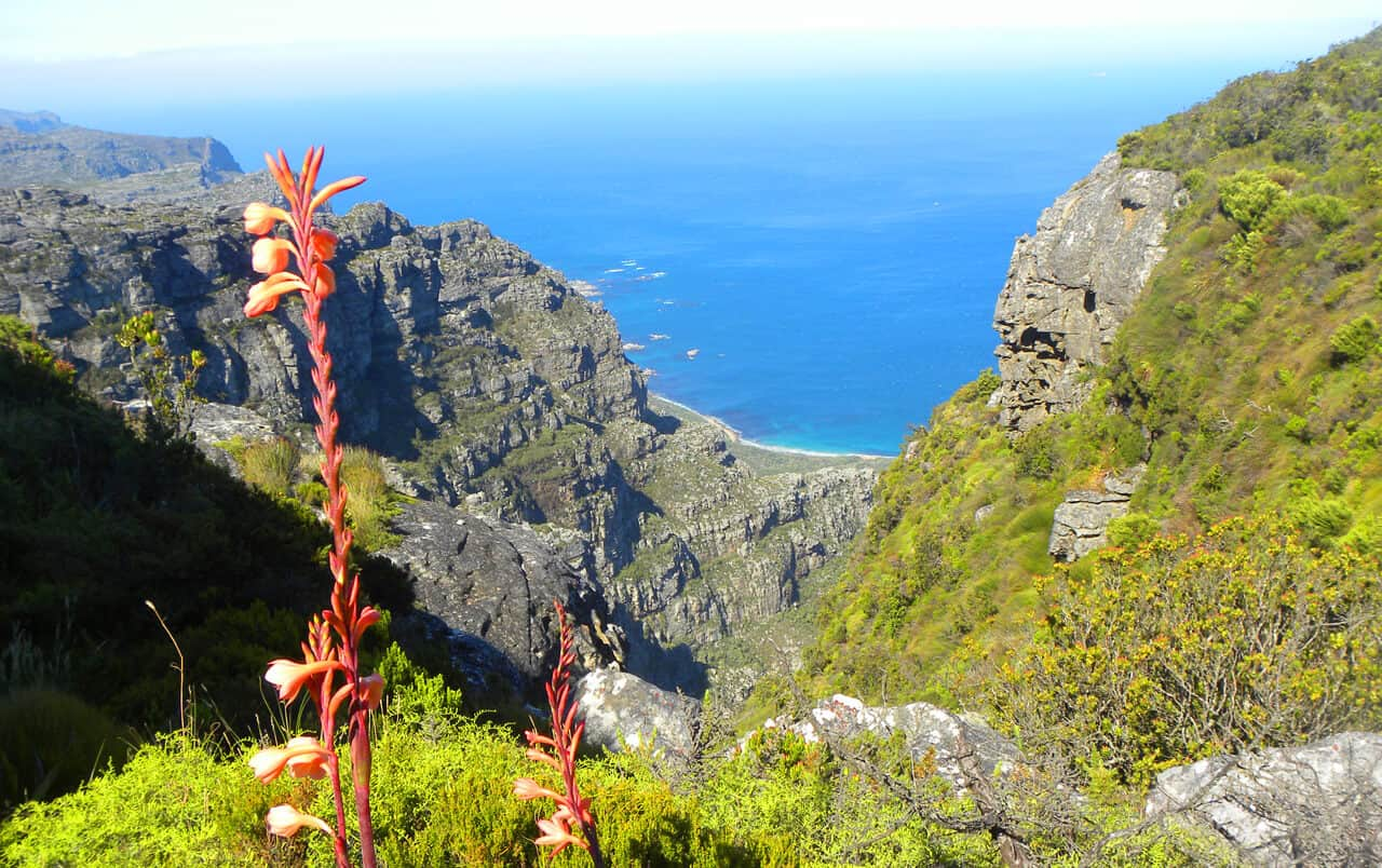 Hiking up the Twelve Apostles to Table Mountain
