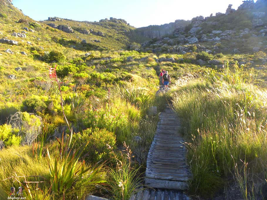 hiking spine of twelve apostles, cape town