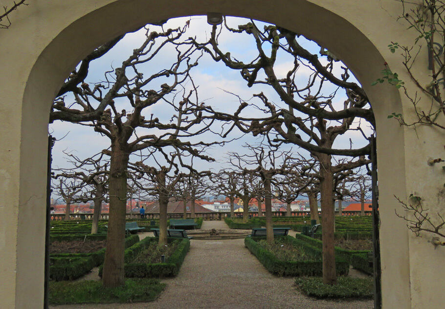 Rose Garden of the Neue Residenz, Bamberg, Germany