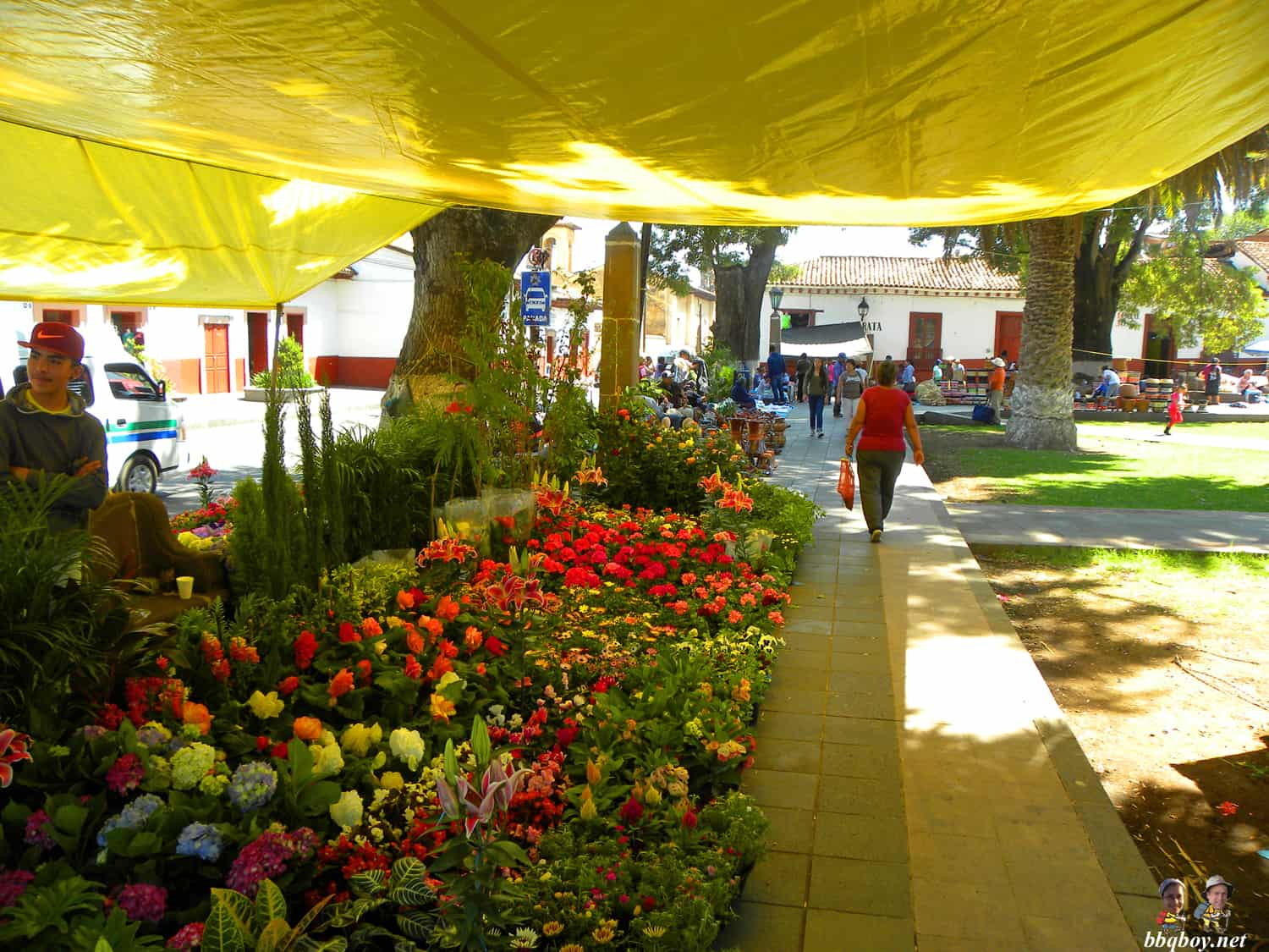 Friday market in Patzcuaro, Mexico (3)