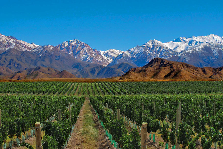 mendoza-wikitravel. Avoiding Europe in the summer…and other places to go instead