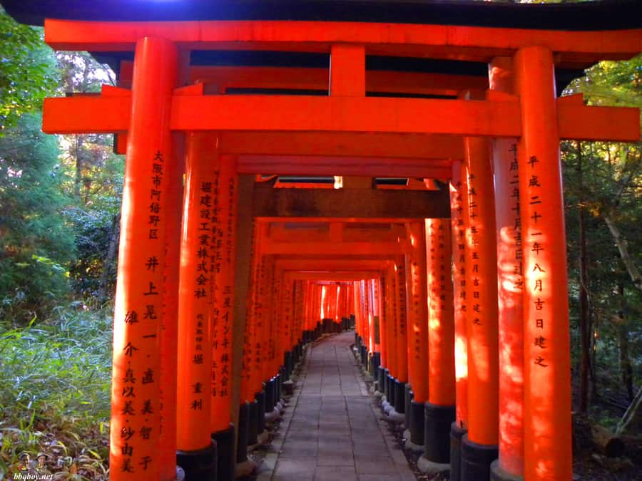fushimi-inari-shrine-4
