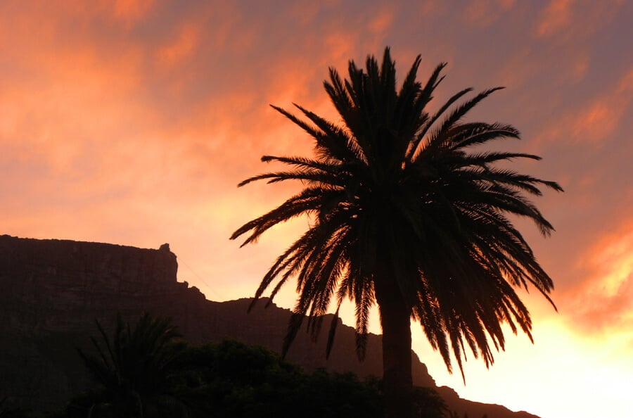 Table Mountain, Cape Town. Our Favorite Photos from a year of travel