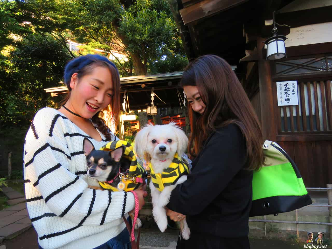 girls and dogs, ueno park, tokyp