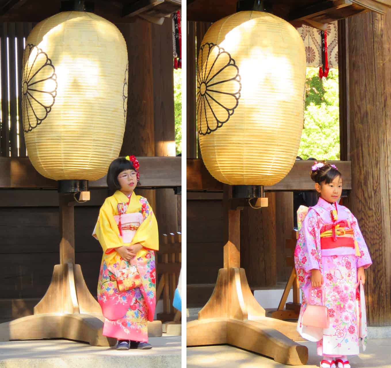 meiji shrine, Tokyo. The Friendly Faces of Japan (and some pets)