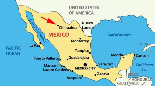 vector Mexico - map of United Mexican States