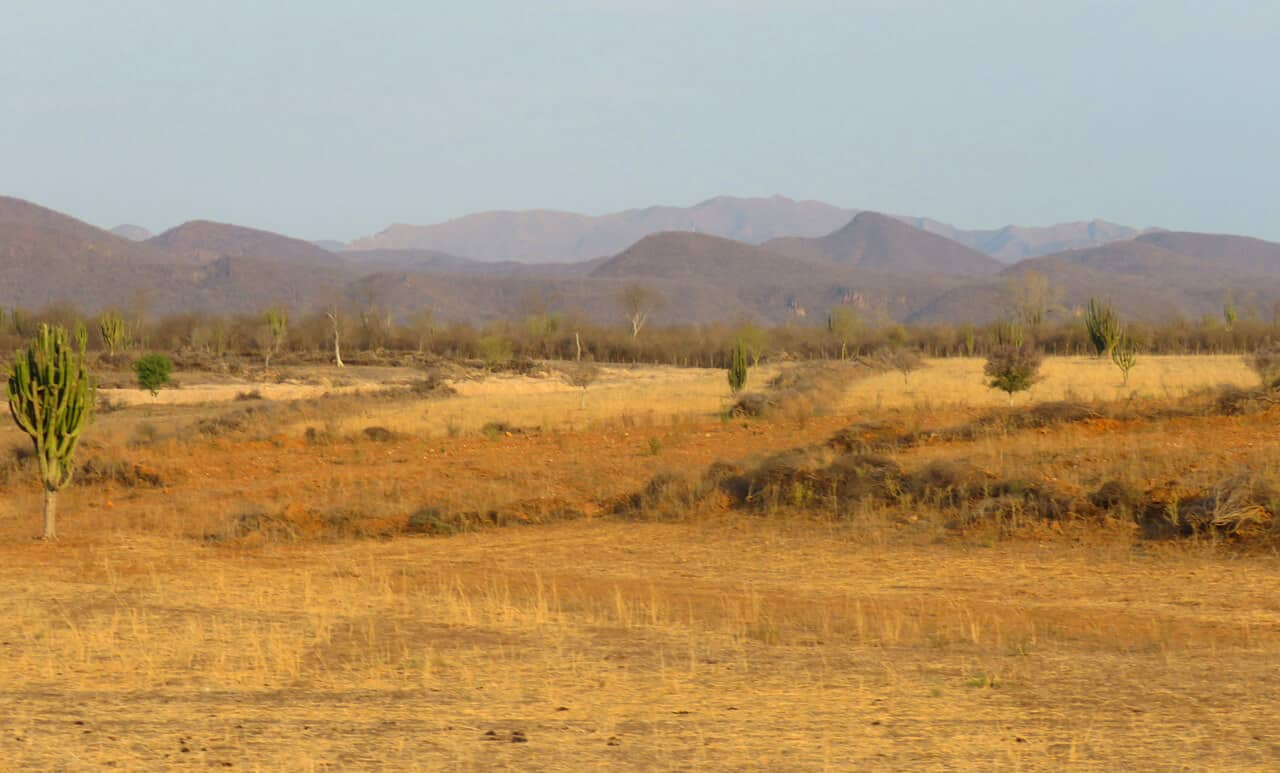 desert views, northern Mexico seen from El Chepe