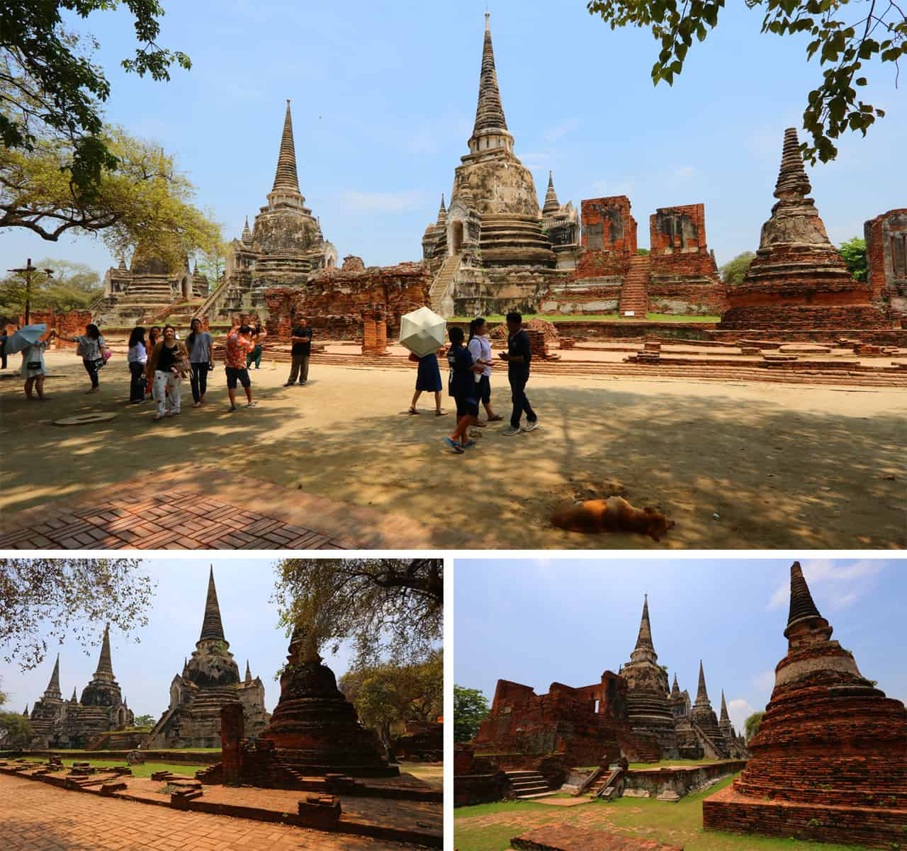 Wat Phra Sri Sanphet, the best of Ayutthaya in a Day