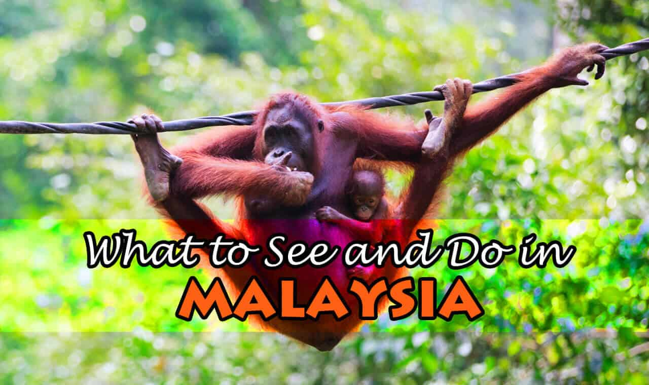 What to See and Do in Malaysia