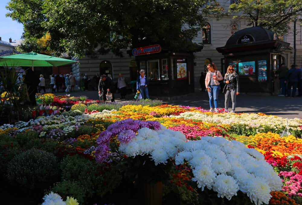 Flowers at the market, Lviv