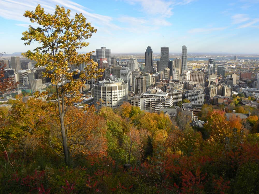 Montreal in Autumn from Mont-Royal