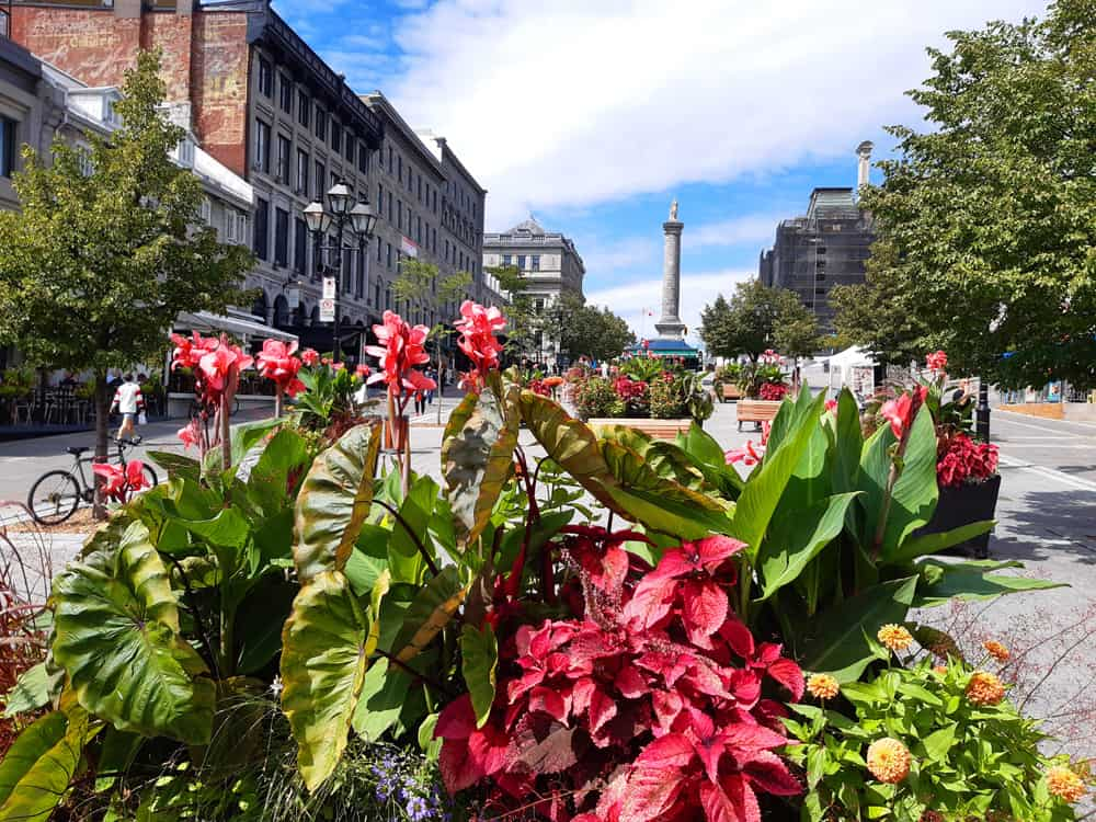 Place Jacques-Cartier during Covid