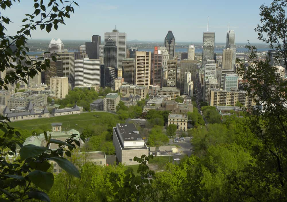 Views from the Escarpment trail, Montreal
